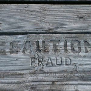 fraud-2a
